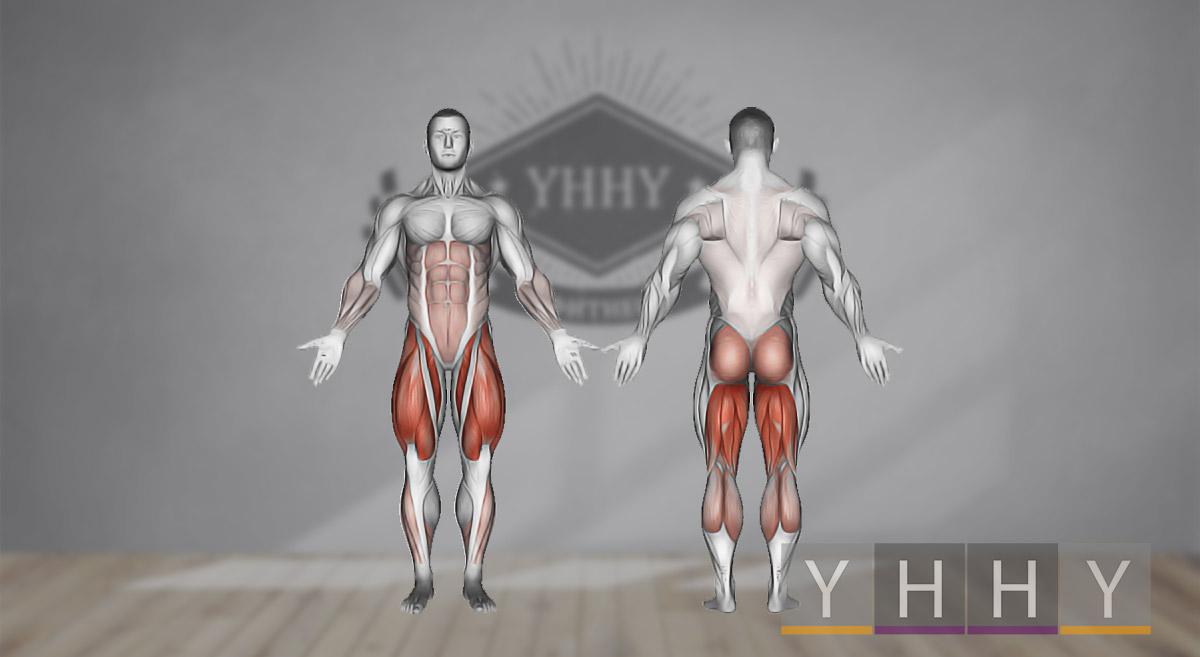 Какие мышцы работают при приседаниях с гирей