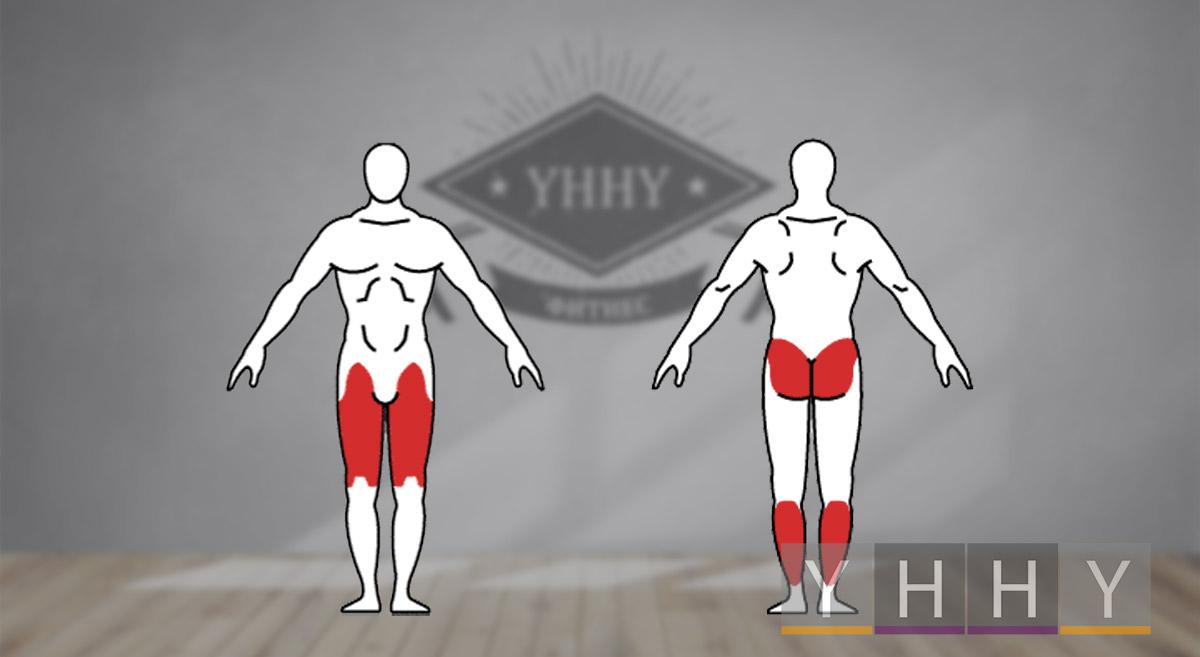 Какие мышцы работают при выпадах с гирей