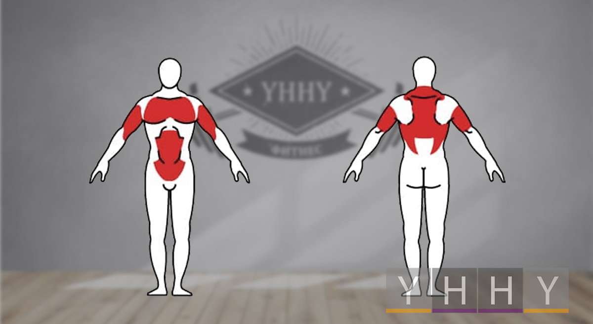 Какие мышцы работают во время жима гири