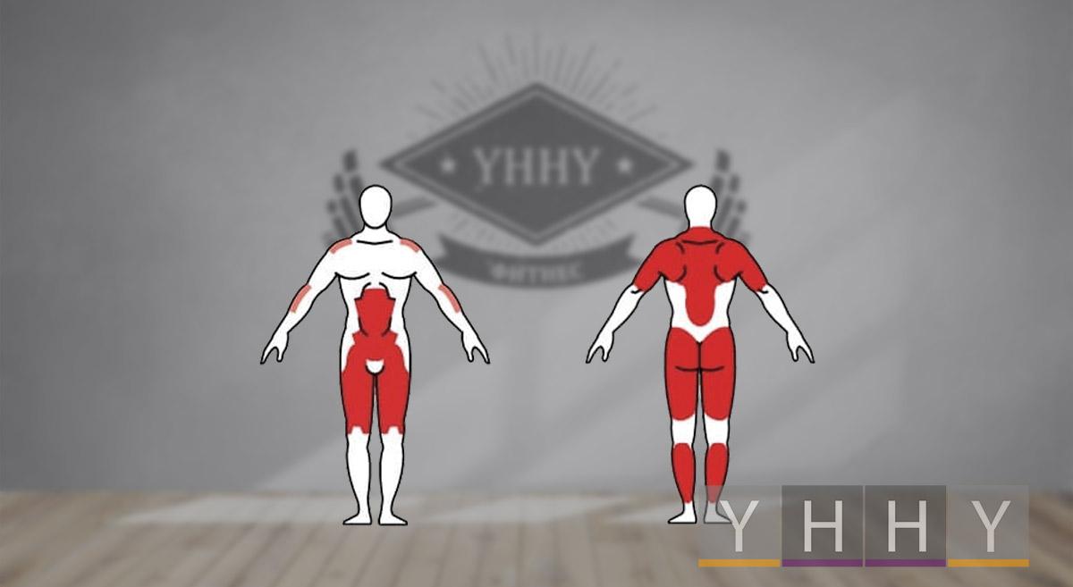 Какие мышцы работают во время рывка гири