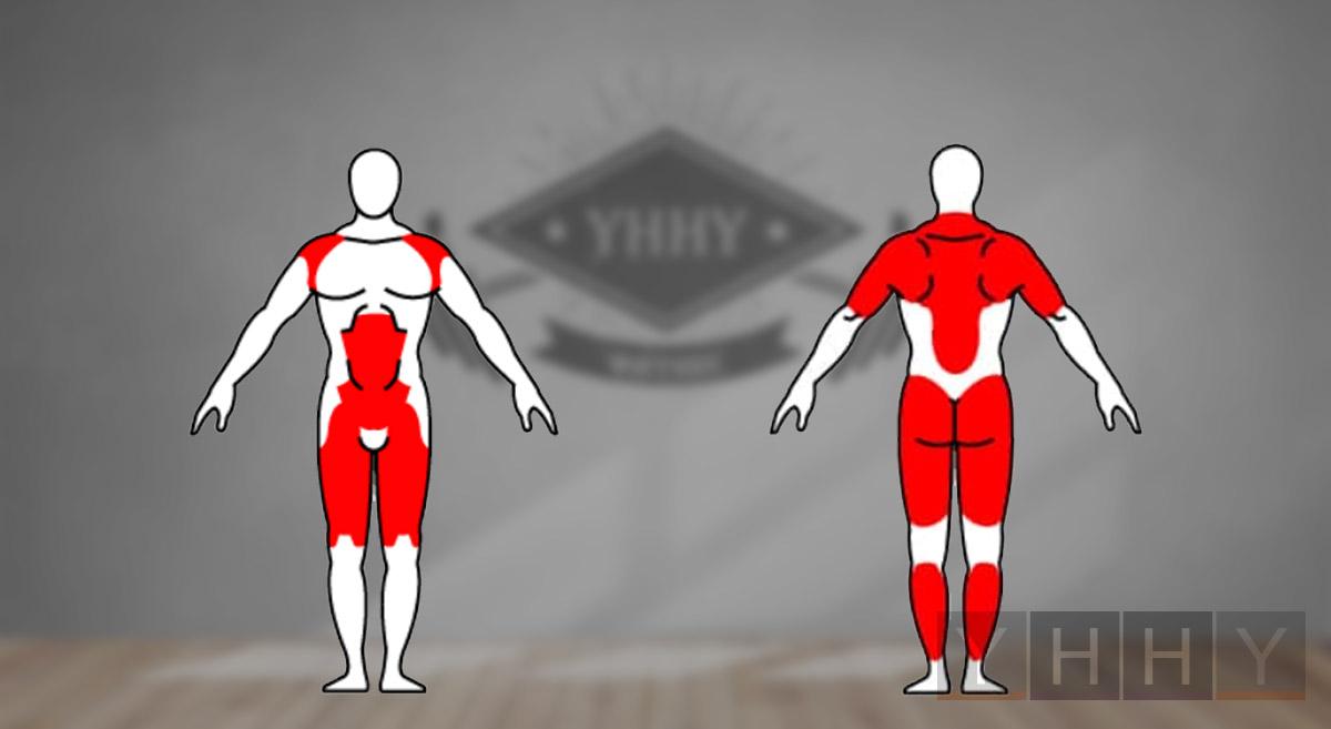 Какие мышцы работают при взятие гири на грудь