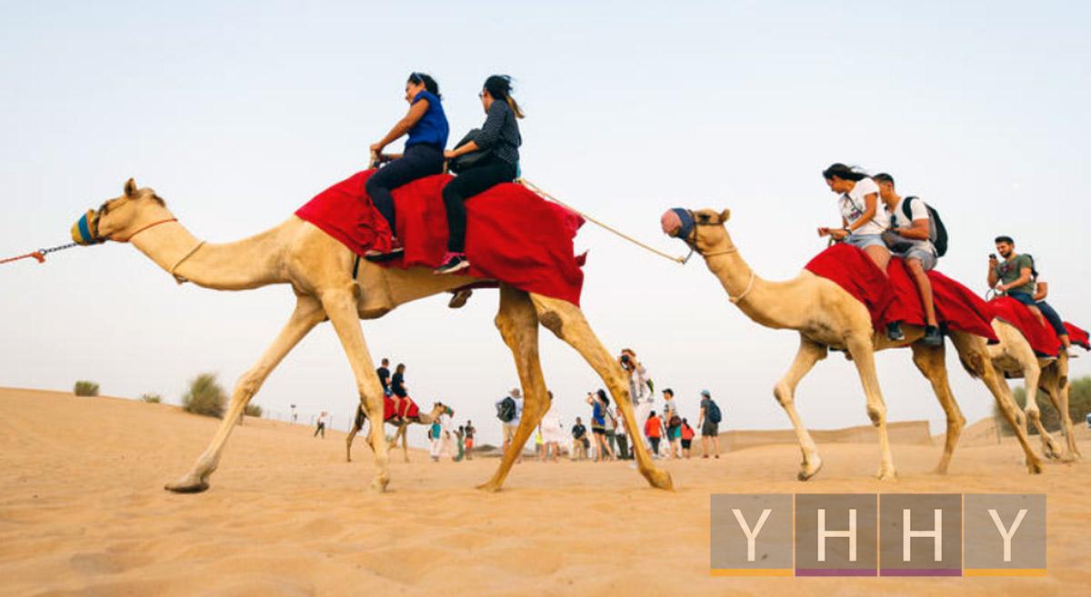 Экскурсии по пустыне из Абу-Даби