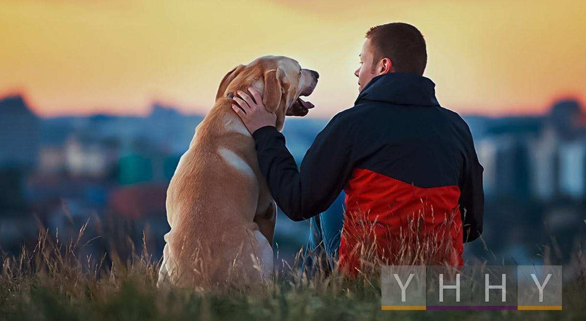 Будьте ответственным владельцем собаки