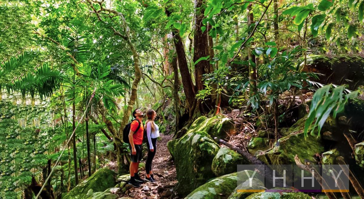 Ключевые туристические тенденции Австралии в 2021 году